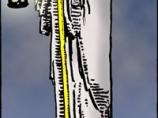 Карта таро отшельник
